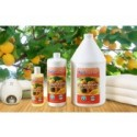 BodyChoice Apricot Kernel Massage Oil