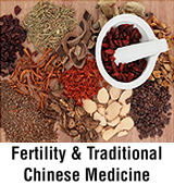 Fertility & Traiditional Chinese Medicine