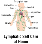 Lymphatic Self Care at Home